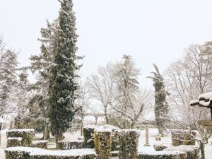 fotos boda nieve madrid