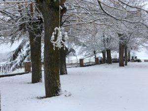 naturaleza nevada eventos segovia